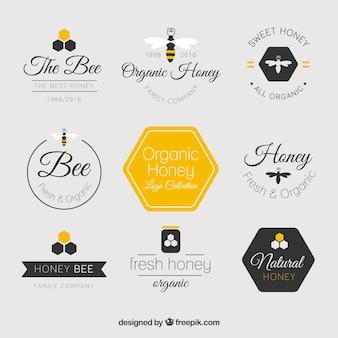 Logos planos bonitos de miel
