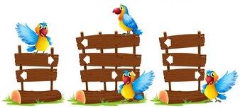 Loros por el signo de madera ilustración