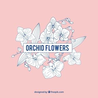 Marco con orquídeas y fondo rosa