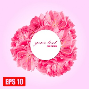 Marco de flores de color rosa