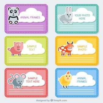 Marcos de animales a color