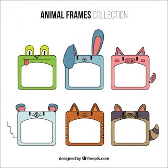 Marcos decorativos de simpáticos animales