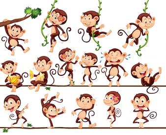 Monos haciendo diferentes acciones ilustración