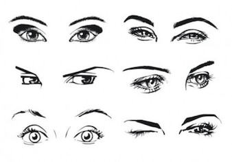 ojo ojos pestañas vector retratando