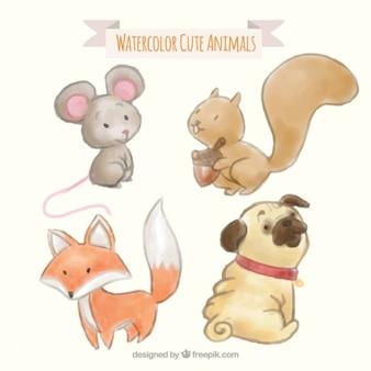 Pack de animales adorables de acuarela