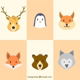Pack de animales de invierno