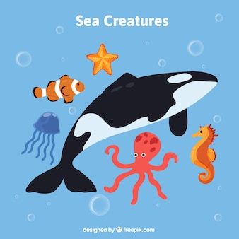 Pack de animales marinos salvajes