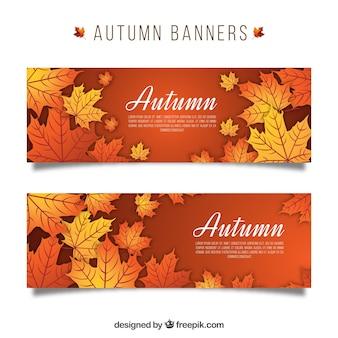 Pack de banners con hojas otoñales