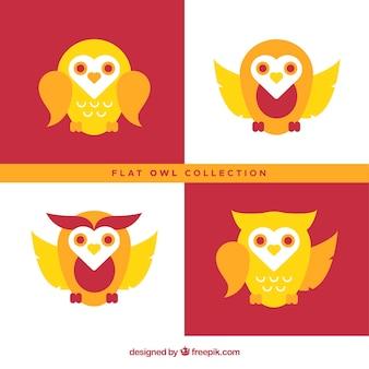 Pack de búhos en diseño plano