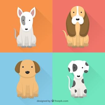 Pack de cachorros divertidos