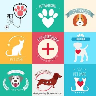 Pack de dibujos de veterinario de mascotas