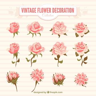 Pack de flores rosas en estilo vintage
