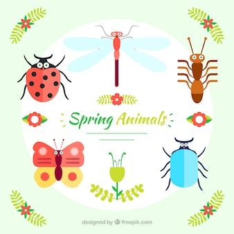 Pack de insectos primaverales