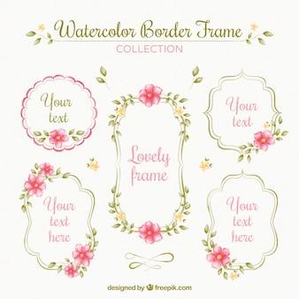 Pack de marcos de acuarela ornamentales con flores