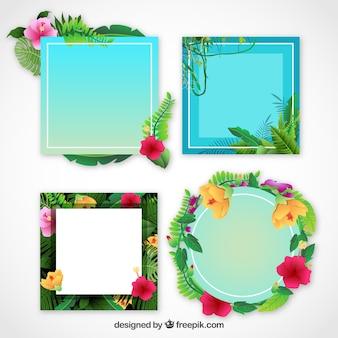 Pack de marcos decorativos con detalles florales