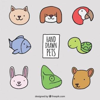 Pack de mascotas dibujadas a mano