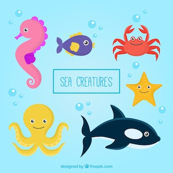 Pack de simpáticas criaturas marinas dibujadas a mano