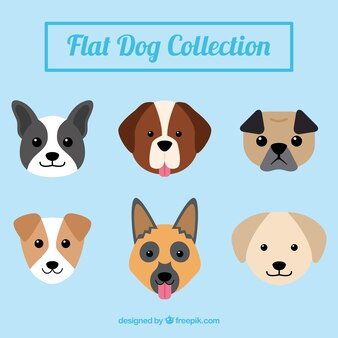 Pack de simpáticos perros en diseño plano