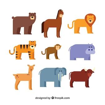 Pack plano de nueve animales diferentes