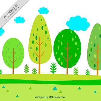 Paisaje de árboles verdes y nubes