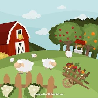 Paisaje de granja  con ovejas