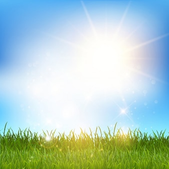 Paisaje de hierba brillante