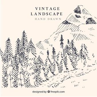 Paisaje de montañas dibujado a mano