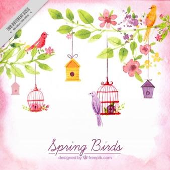 Pájaros primaverales pintados a mano en acuarela