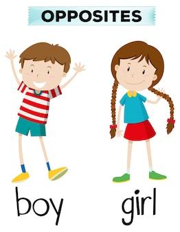 Palabras opuestas para el muchacho y la muchacha