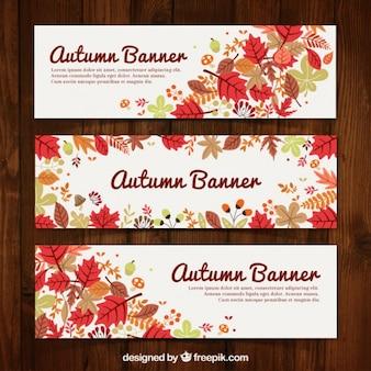 Paquete de banners de otoño floridos