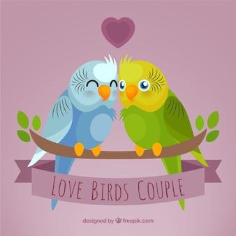 Pareja de pájaros enamorados
