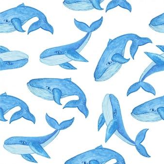 Patrón de ballenas en acuarela