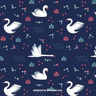 patrón de cisne encantador