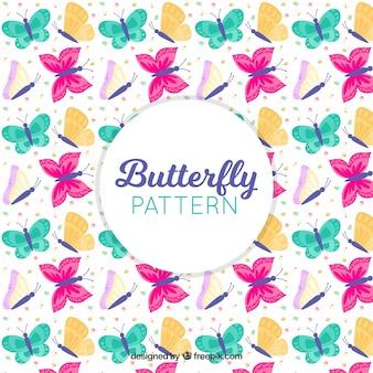 Patrón de coloridas mariposas