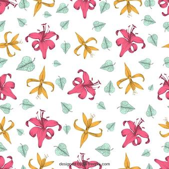 Patrón de flor del lirio