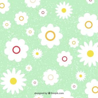Patrón de flores blancas