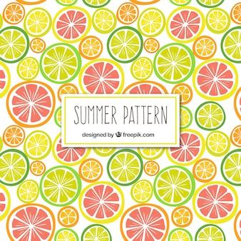 Patrón de frutas cítricas