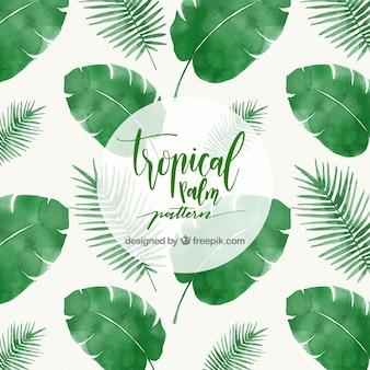 Patrón de hojas tropicales de palmera