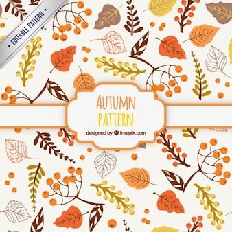Patrón de otoño dibujado a mano