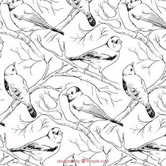Patrón de pájaros dibujados a mano