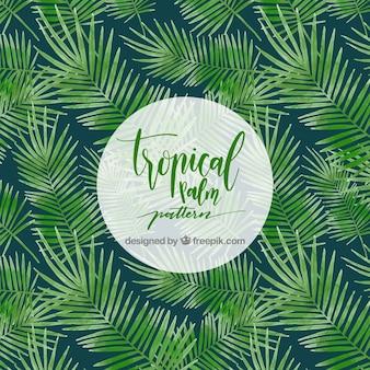 Patrón de palmeras tropicales