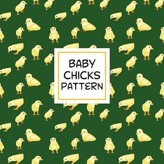 Patrón de pollos bebés