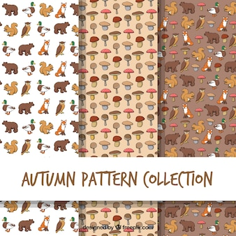 Patrones de otoño con animales y setas