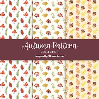 Patrones de otoño con estilo de dibujo a mano