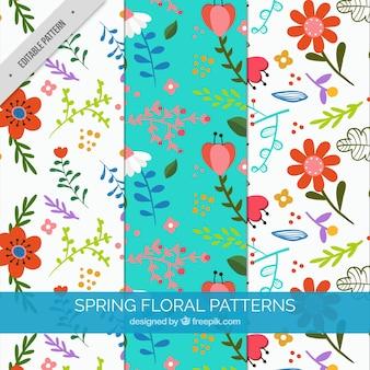 Patrones de primavera decorativos con flores bonitas