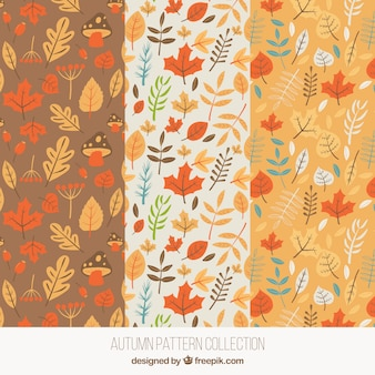 Patrones para otoño con hojas y setas