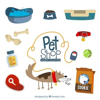 Perro con diferentes accesorios