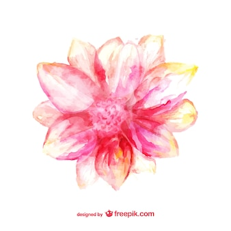 Pétalos de flor pintados con acuarela