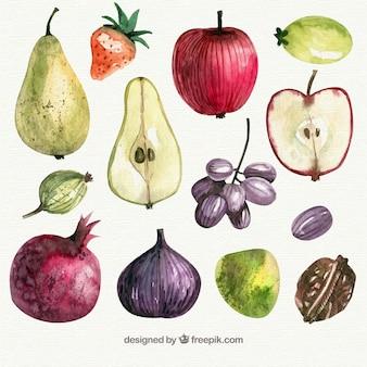 Piezas de fruta sabrosas en estilo de acuarela