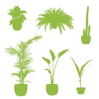 Plantas de apartamento, siluetas